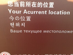 Sometimes the Chinglish is easy to understand.