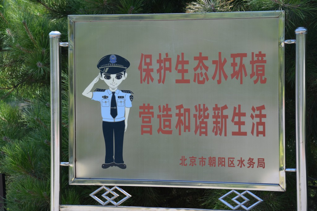 Barney Fife, Chief Reilly, or Dirty Harry?  In China the police exist to protect the group, not the individual.  Frankly, I find that very reassuring.