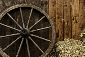 So the wheel was a great invention.  But is it plausible that no one else would have come up with the idea?
