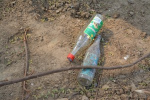 The deceased, like the living, may enjoy celebrating with a little alcohol.  These are empty bottles of baijiu which was probably poured on the grave marker.